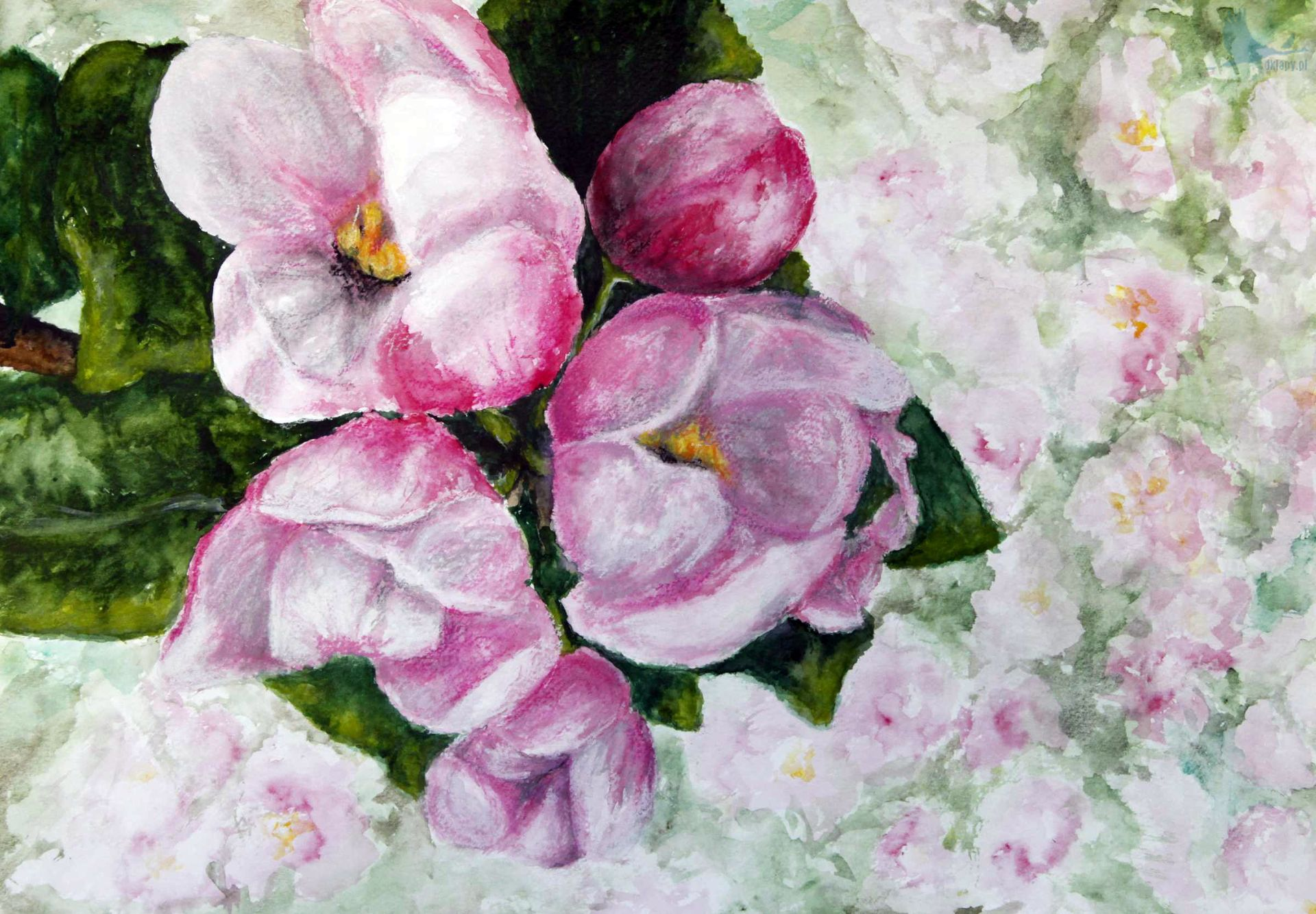 Kwiat dziełem doskonałym. Praca konkursowa